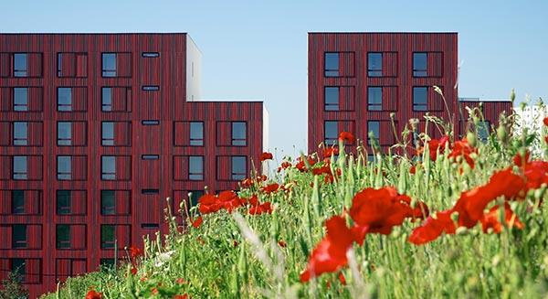 artnership for sustainable city